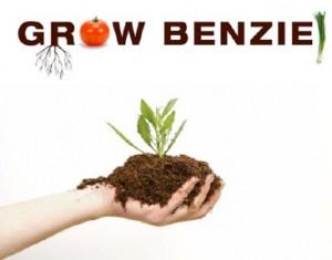Grow Benzie Workshop with Craig Schaaf